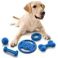 Dog Supplies Ridgewood Kennels