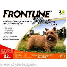 Front Line Plus for Dogs