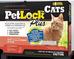 petlock flea and tick cat