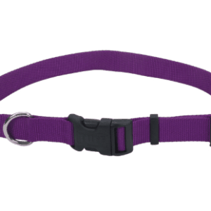 Collar Purple