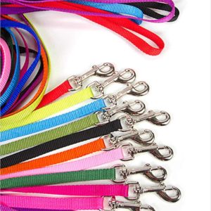 Coastal Nylon Lead Leashes For Dogs