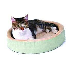 cat supplies and toys for sale