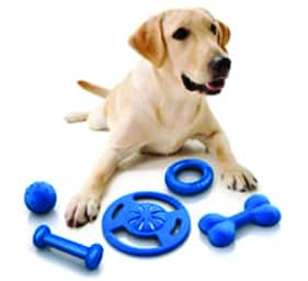 Dog supplies and toys for Sale